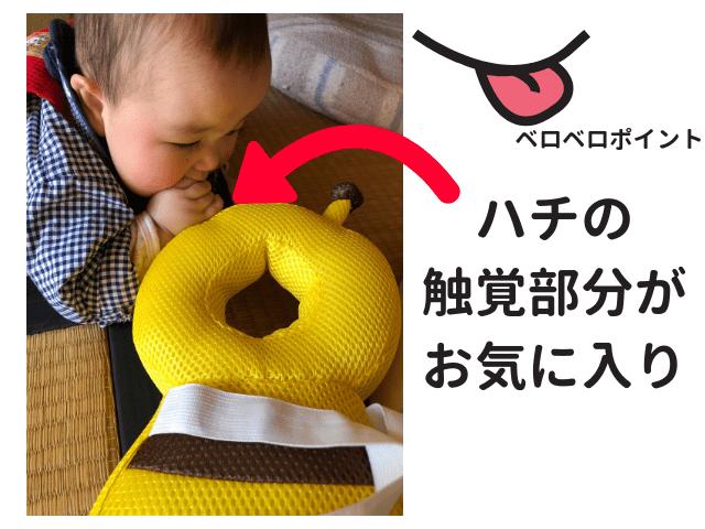 ハチごっつん防止クッションを舐める、洗う