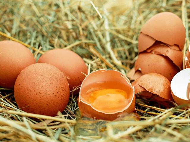 賞味期限が切れた卵って、いつまで食べることができる?